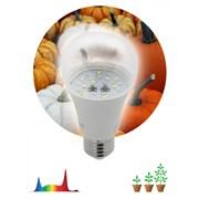 FITO Лампы тип цоколя E27  ЭРА FITO-11W-Ra90-E27