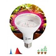 FITO Лампы тип цоколя E27  ЭРА Лампа красно-синего спектра FITO-16W-RB-E27-K